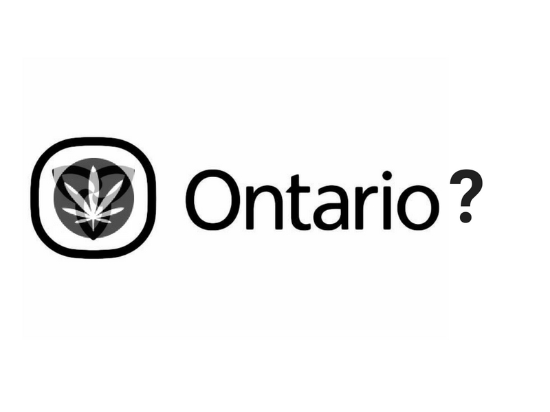 As Ontario Votes, We Ask the Candidates Where They Stand on Cannabis.
