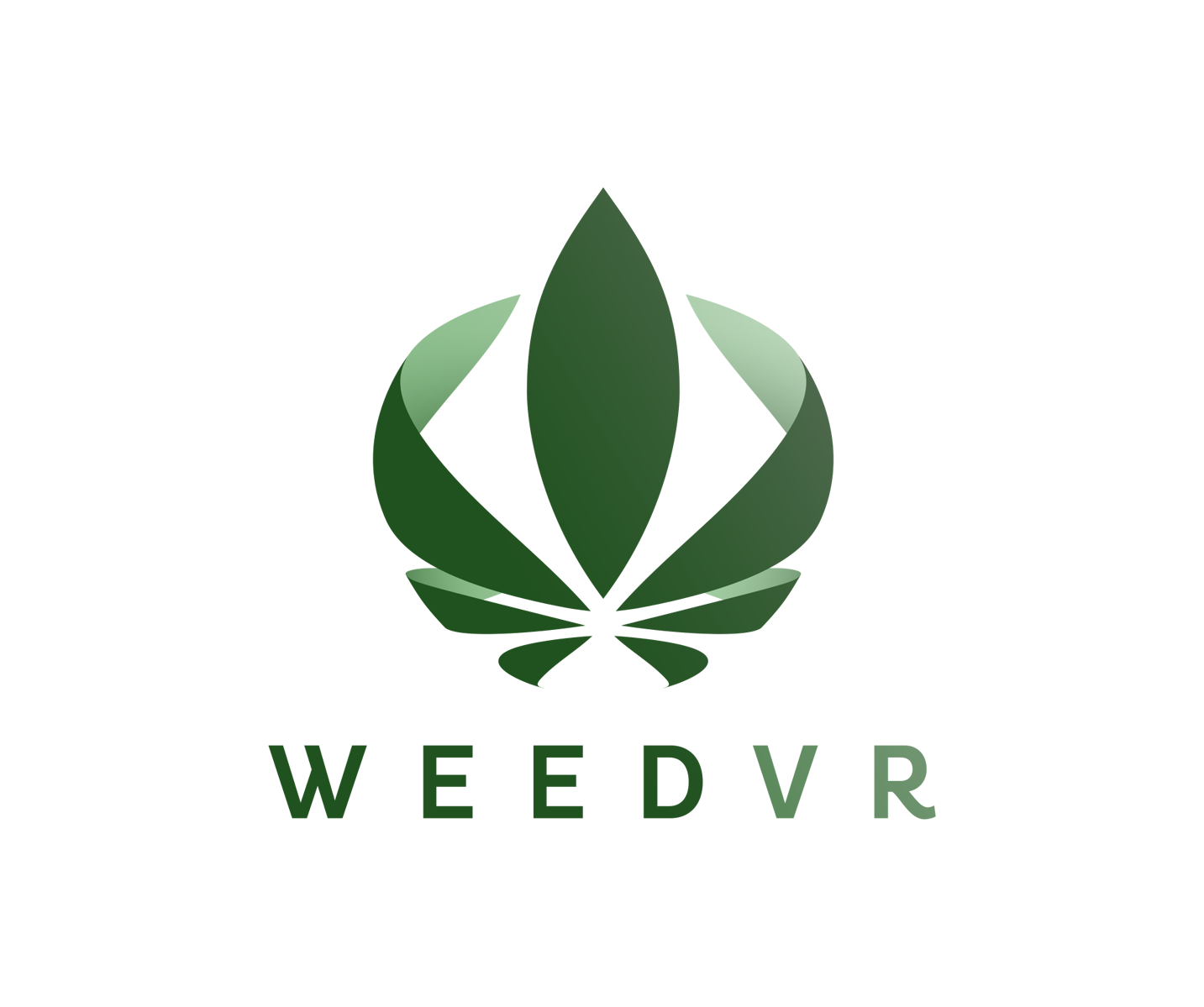 Weed VR – Future Tech Today