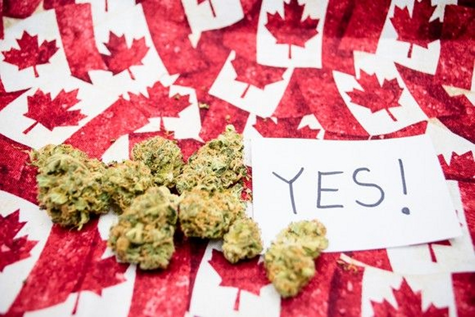 "Marijuana buds next to piece of paper with ""Yes!"" written on it on top of tiny Canadian flags"