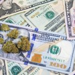 Marijuana operator Acreage Holdings announces landmark $119 million funding