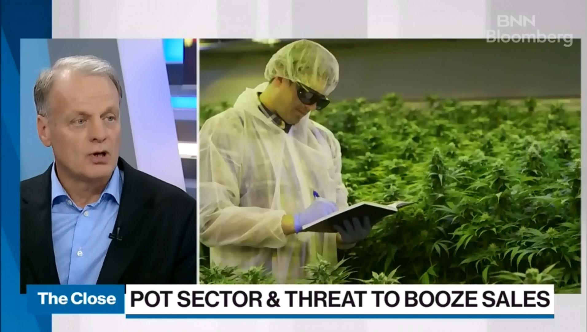 AB InBev, Pepsi, Coca-Cola All Likely Eyeing Cannabis: Former Alcohol Industry Exec