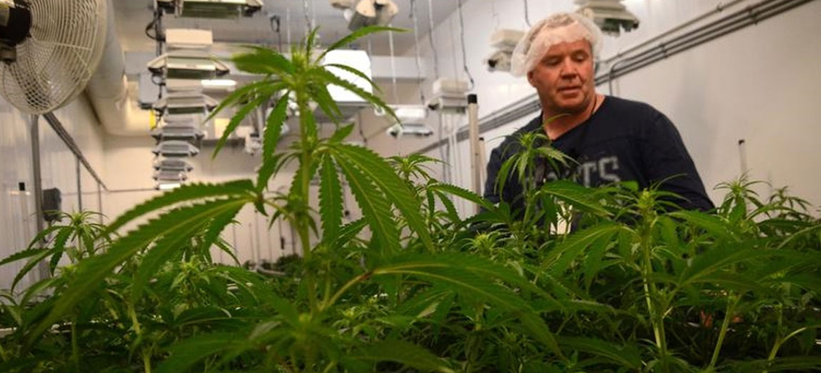 Frank MacMaster, President of Highland Grow